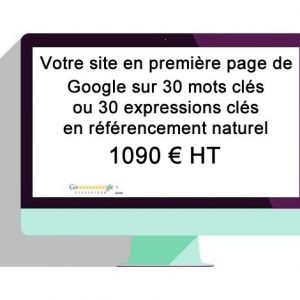 referencement pas cher site internet